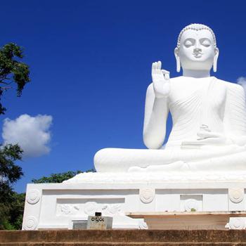 Voyage Nouvini : Sri-Lanka Tour Complet