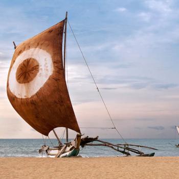 Voyage Nouvini : Nature du Sri Lanka