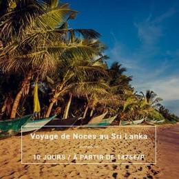 Voyage de Noces Sri Lanka