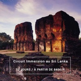 Voyage Sri Lanka : Circuit Immersion