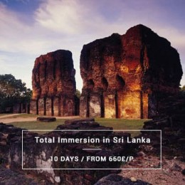 Visit sri lanka in immersion
