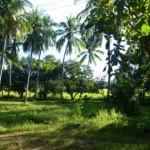 Kuda Oya Sri Lanka